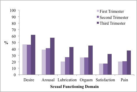 Percent of pregnant women meeting cut-off scores for six domains of sexual dysfunction (adapted from Table 4 of Galazka et al., 2014)